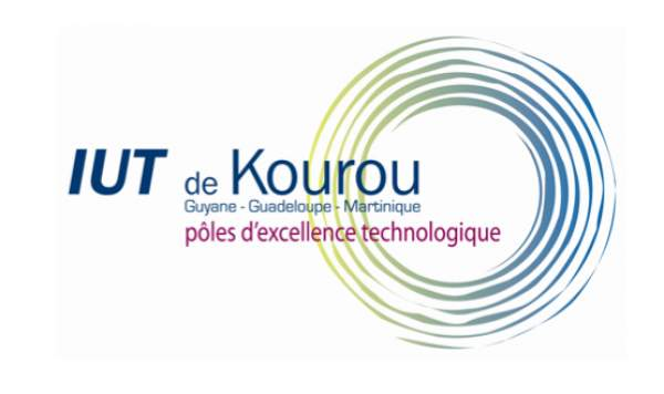 Innovation de l'IUT de Guyane Lancement d'un Bachelor Universitaire de Technologie (B.U.T)