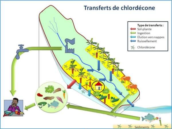 Lancement du plan Chlordécone IV