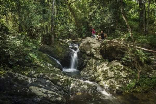 La Nouvelle-Calédonie ne cesse de multiplier les initiatives en faveur d'un tourisme durable, ce qui permet aujourd'hui à l'archipel de devenir la destination durable incontournable de 2021, selon National Geographic.